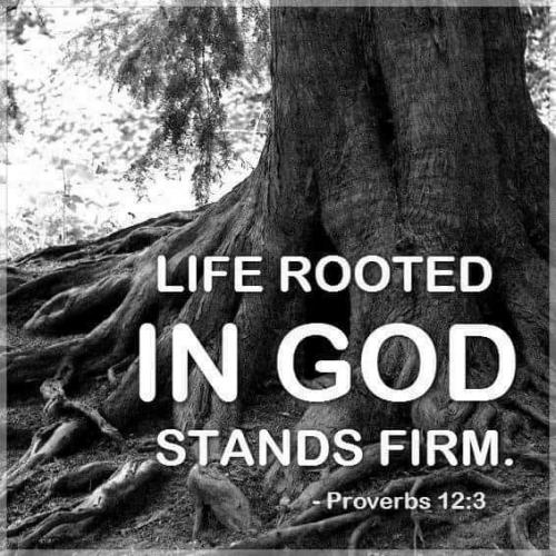 Life Rooted in God
